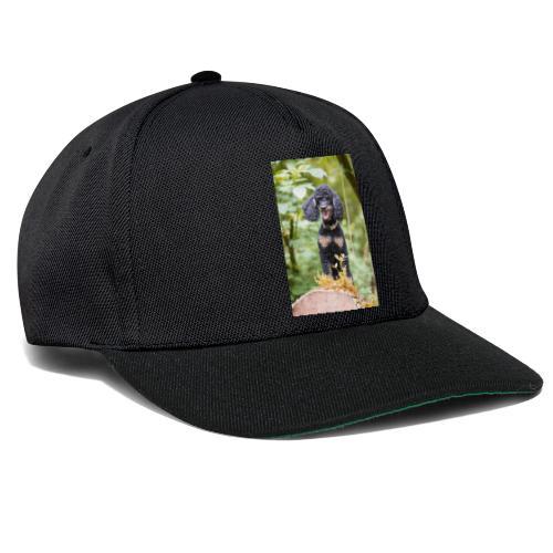 TOM 3434 - Snapback Cap