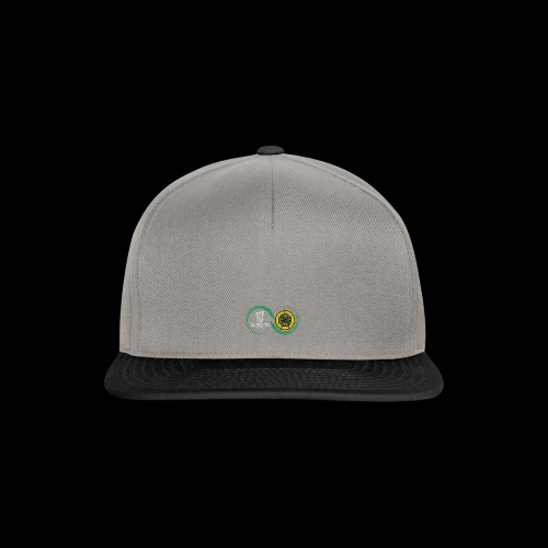 Harp and French CSC logo - Casquette snapback