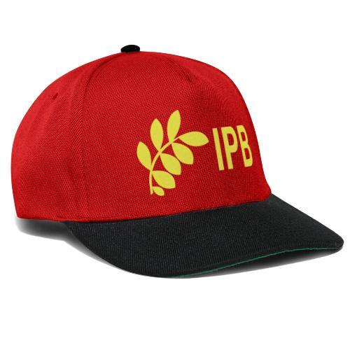 International Peace Bureau IPB version 4 - Snapback Cap