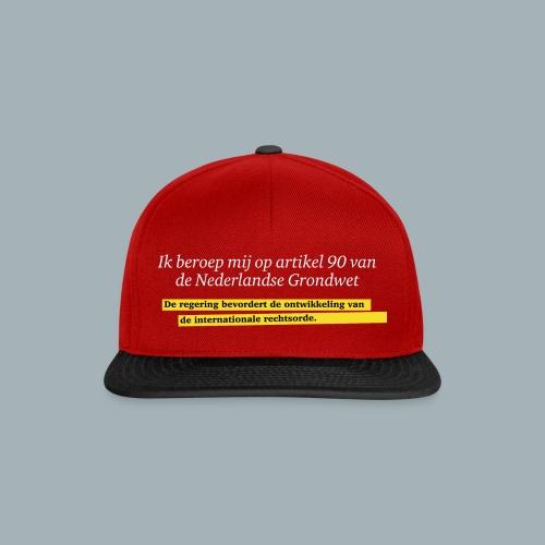 Nederlandse Grondwet T-Shirt - Artikel 90 - Snapback cap