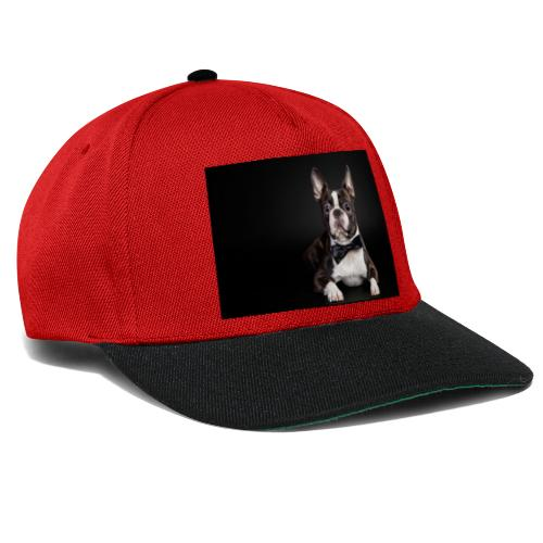 BIG DOG - Gorra Snapback