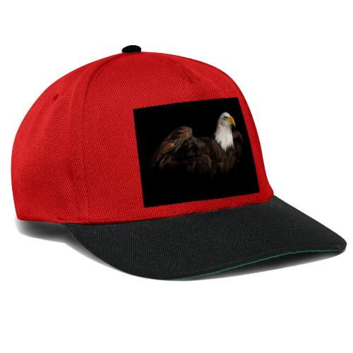 306419 - Snapback Cap
