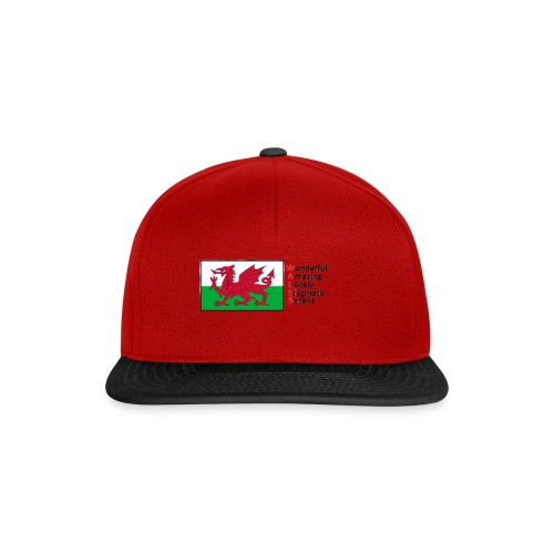 wales_letters - Snapback Cap