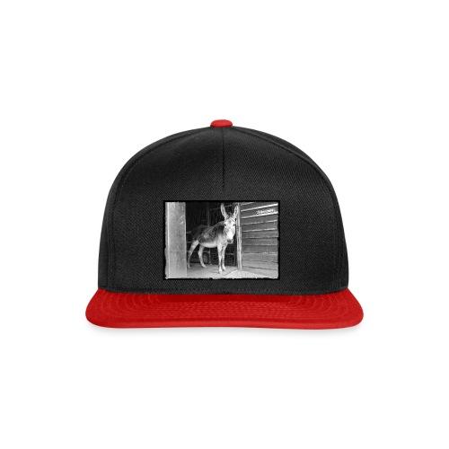 Zickenstube Esel - Snapback Cap