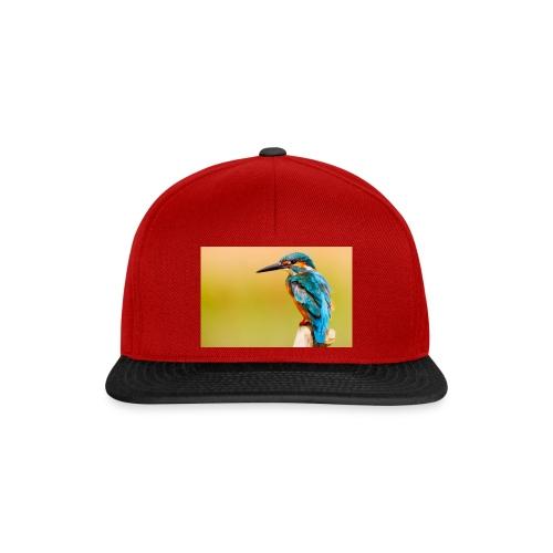 kingfisher 2046453 1920 - Snapback Cap