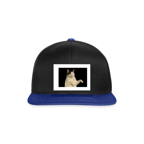 Kitty cat - Snapback cap