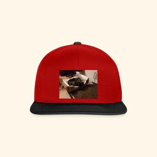 Hund im Hundekörbchen - Snapback Cap