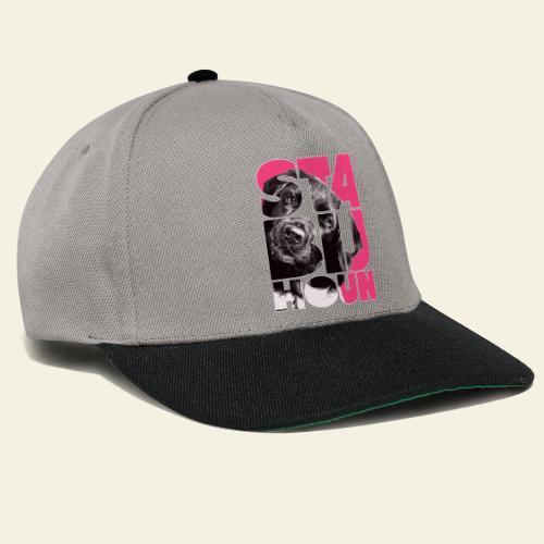 NASSU Stabijhoun 4 - Snapback Cap