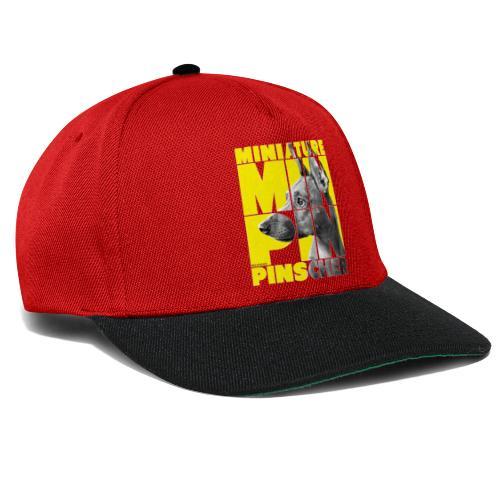 Minpin V - Snapback Cap