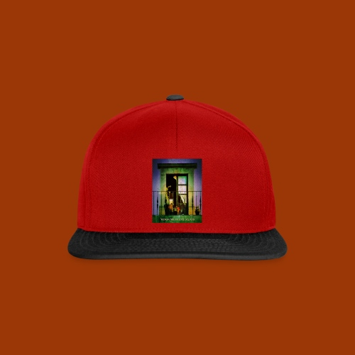 Windows in the Heart - Snapback Cap