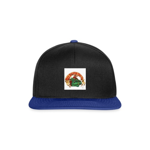DiceMiniaturePaintGuy - Snapback Cap