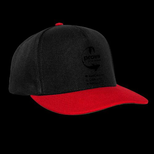prowin PlanB3 - Snapback Cap