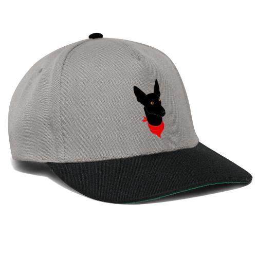 perro negro - Gorra Snapback