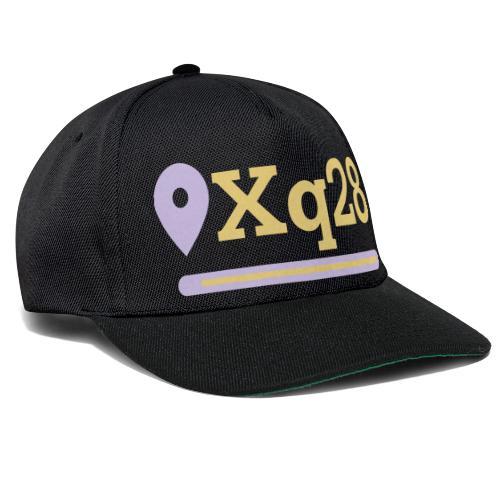xq28 - Snapback Cap