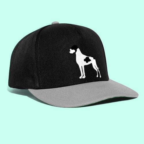 Plattendogge - Snapback Cap