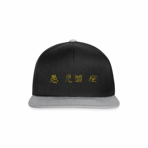 Schriftzug HydroX - Snapback Cap