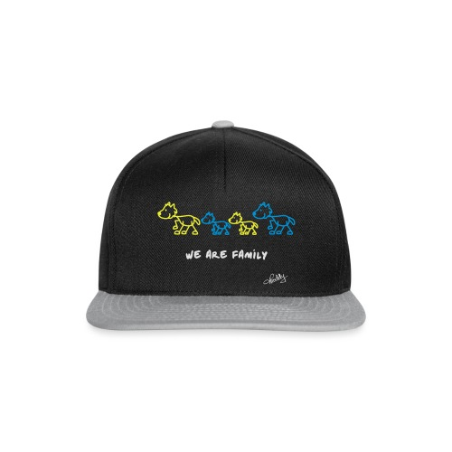 We are Family - Snapback Cap