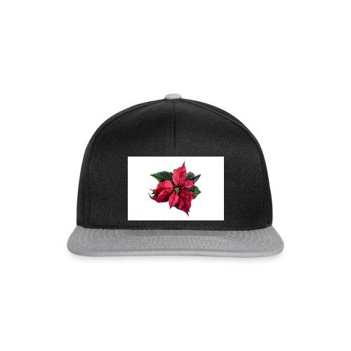 christmas-flower-1386873634Kpm - Snapbackkeps
