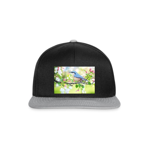 spring bird 2295431 1920 - Snapback Cap