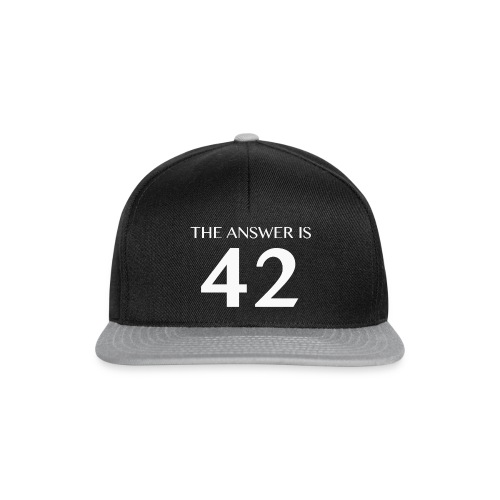The Answer is 42 White - Snapback Cap