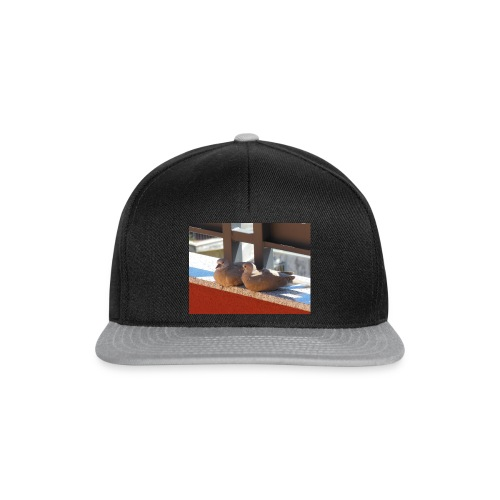 DSCN1222-JPG - Snapback Cap