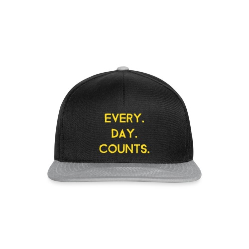 Every.Day.Counts. - Snapback Cap