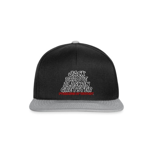 Pyramide of Victory - Casquette snapback