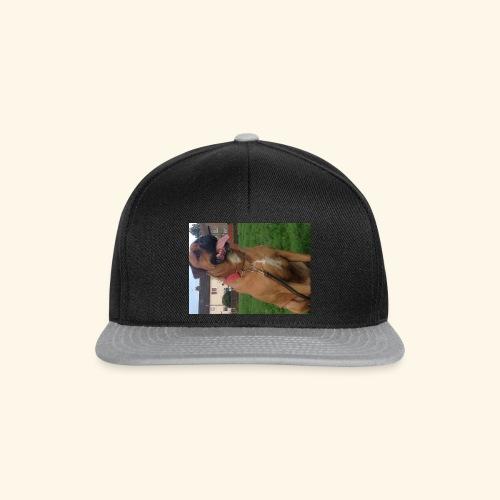 Big Dog tee - Snapback Cap