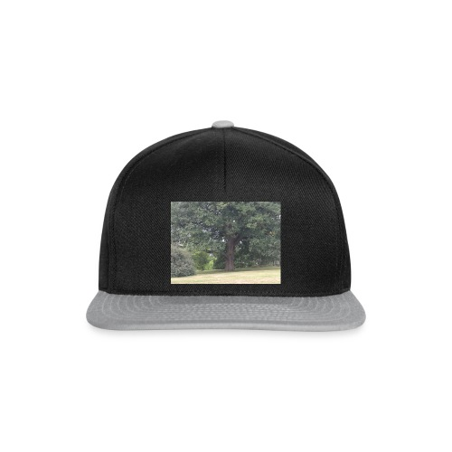 IMG 20180902 104028 - Snapback Cap