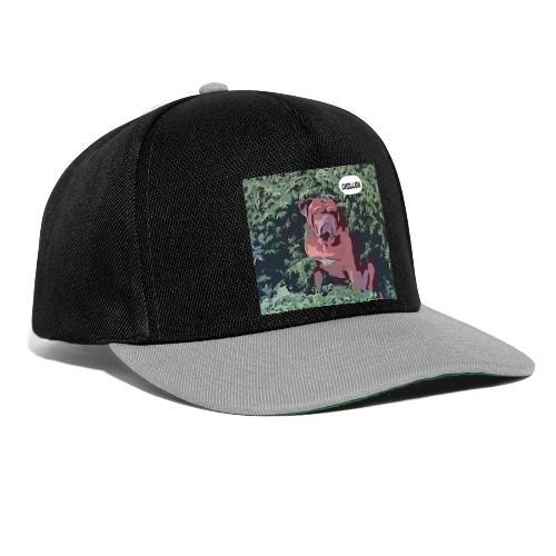 comica1566146737190 - Snapback Cap