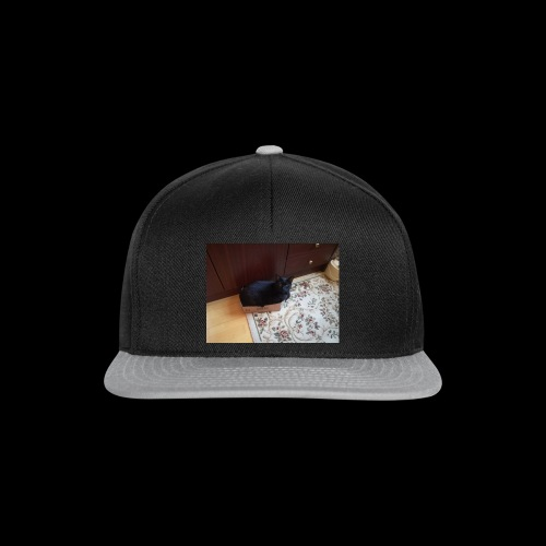 IMG 20170808 WA0021 - Snapback Cap