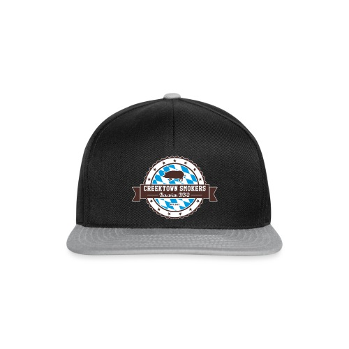 Logo 2016 shirts outline - Snapback Cap