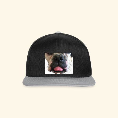 dog, Schnauze, Hundeschnauze ,Bulldogge,Hund, - Snapback Cap