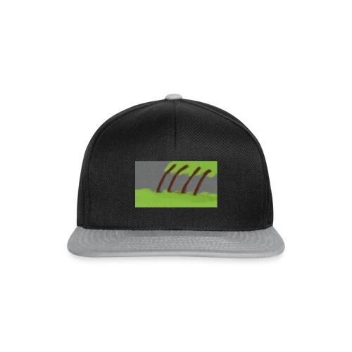 Storm in the Wind - Snapback cap