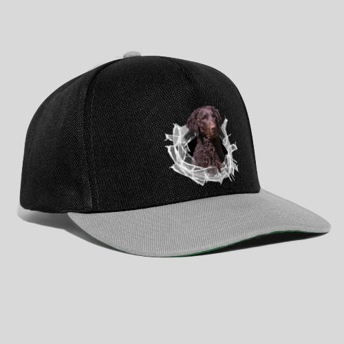 Curly Coated Liver im Glasloch - Snapback Cap