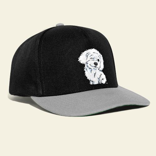 Bolognese - Snapback Cap