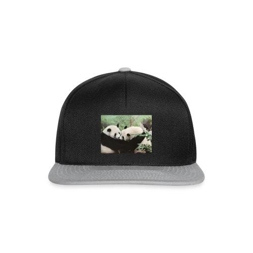 pandor - Snapbackkeps