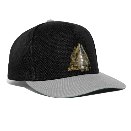 Triangle Tropical Palm Street - Snapback Cap