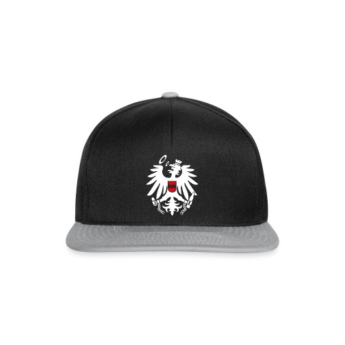 Logo odc V0 9 weiss gross png - Snapback Cap