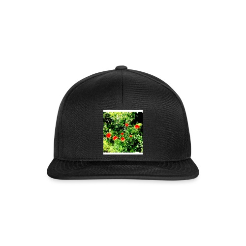 Papaveri - Snapback Cap