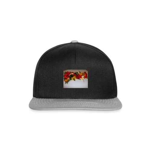 11138598_1384820645175204_2878834941379800483_n - Casquette snapback