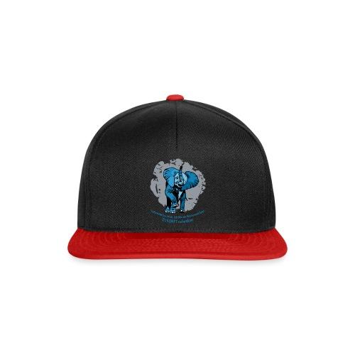 Zukunft schenken - Snapback Cap