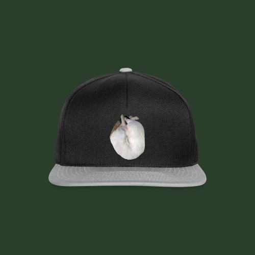 catheart R1 - Snapback Cap