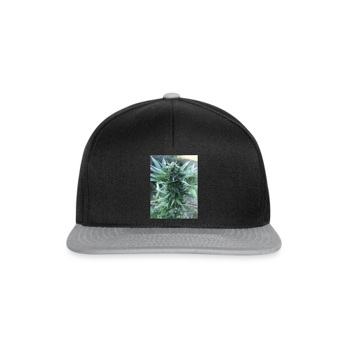 Bud Cannabis - Snapback Cap