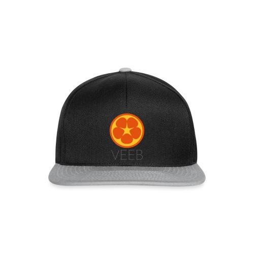 VEEB - Snapback Cap