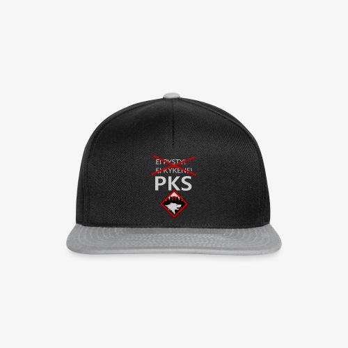 eiPysty2 - Snapback Cap