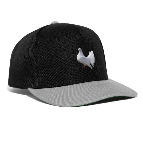 Taube Brieftaube Friedenstaube Vogel - Snapback Cap