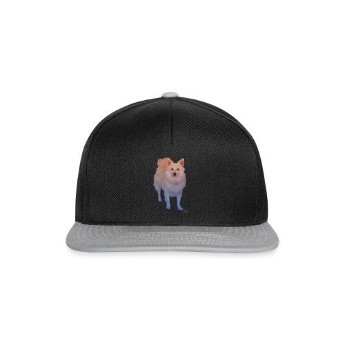 Coloured Pom png - Snapback Cap