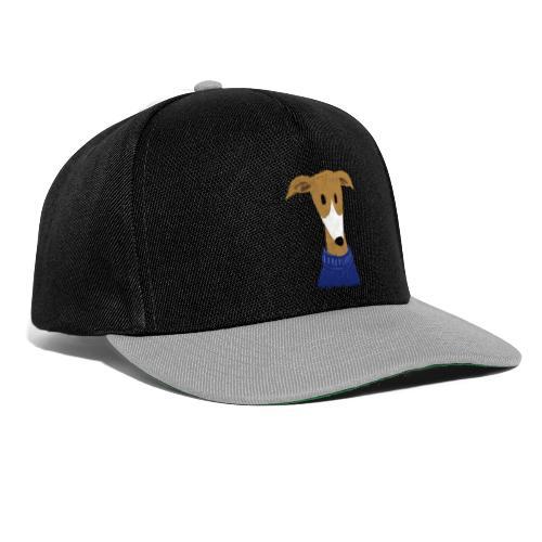 Windhund in blauem Pulli - Snapback Cap