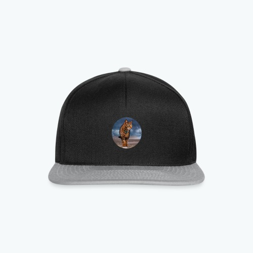 Chat sauvage - Casquette snapback